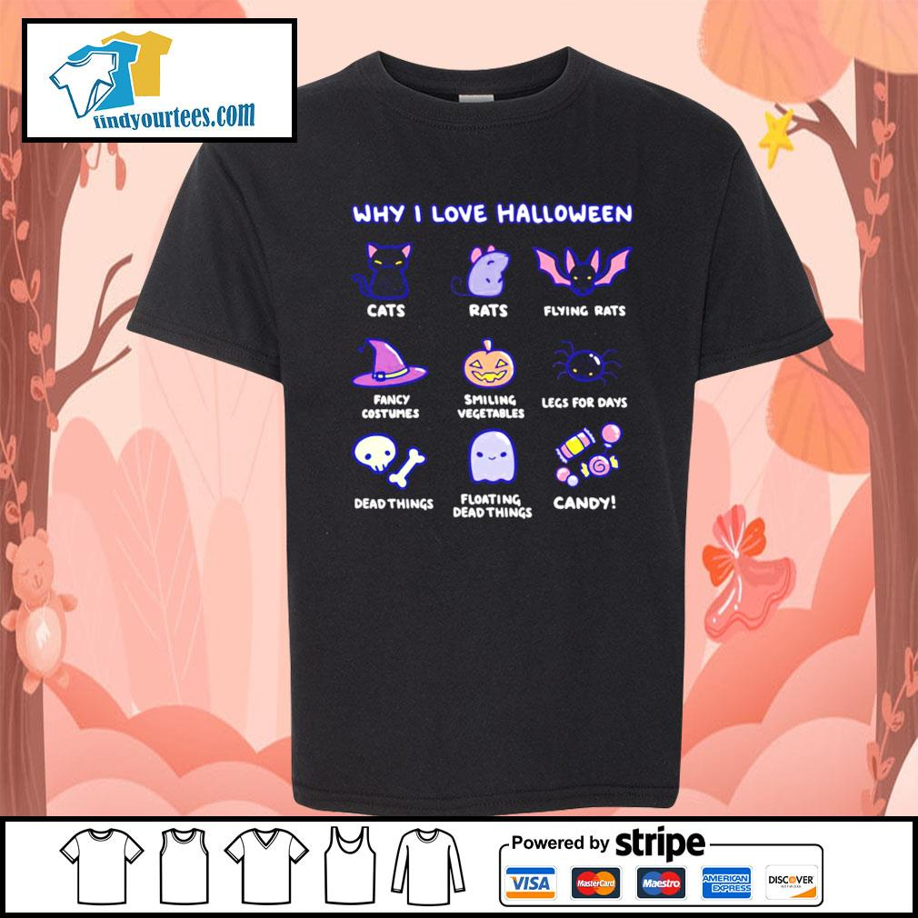 Why I love Halloween cute cats rats fancy costumes candy s Kid-T-shirt