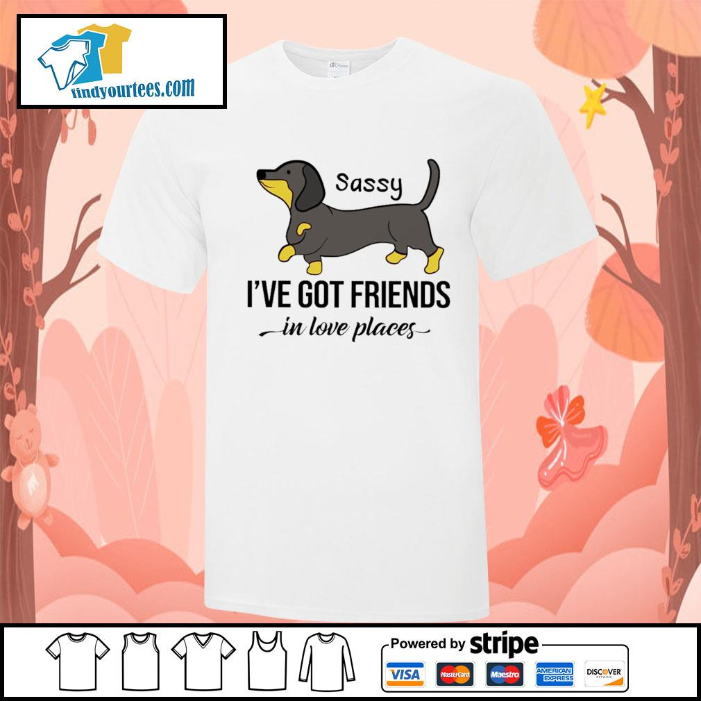 Dachshund Sassy I've got friends in love places shirt